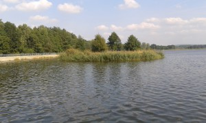 wyspa na zbiorniku Borków
